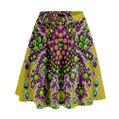 Fantasy Flower Peacock With Some Soul In Popart High Waist Skirt by pepitasart