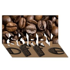 Funny Coffee Beans Brown Typography Sorry 3d Greeting Card (8x4) by yoursparklingshop