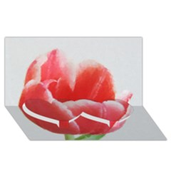 Tulip Red Watercolor Painting Twin Heart Bottom 3d Greeting Card (8x4) by picsaspassion