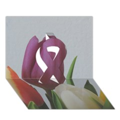 Tulips Ribbon 3d Greeting Card (7x5) by picsaspassion
