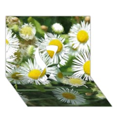 White Summer Flowers Watercolor Painting Art Ribbon 3d Greeting Card (7x5) by picsaspassion