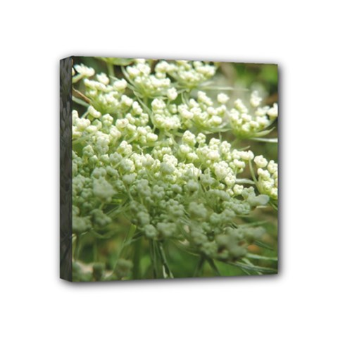 White summer flowers Mini Canvas 4  x 4  by picsaspassion