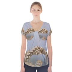 Cornfield Short Sleeve Front Detail Top by picsaspassion
