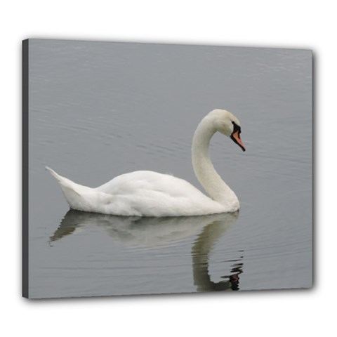 Swimming White Swan Canvas 24  X 20  by picsaspassion