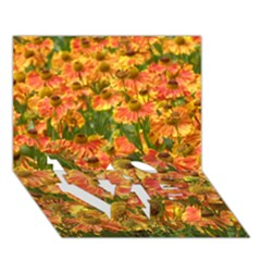 Helenium Flowers And Bees Love Bottom 3d Greeting Card (7x5) by GiftsbyNature