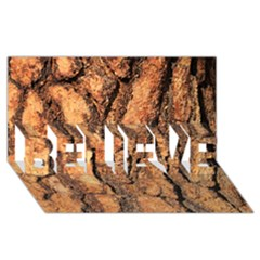 Bark Texture Wood Large Rough Red Wood BELIEVE 3D Greeting Card (8x4) by Zeze
