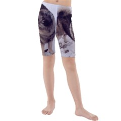 Norwegian Elkhound Full second Kids  Mid Length Swim Shorts by TailWags