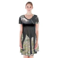 Cane Corso Full Short Sleeve V-neck Flare Dress