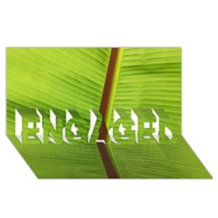 Ensete Leaf Engaged 3d Greeting Card (8x4) by picsaspassion