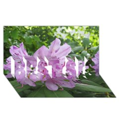 Purple Rhododendron Flower Best Sis 3d Greeting Card (8x4) by picsaspassion