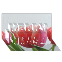 Red Tulips Merry Xmas 3d Greeting Card (8x4) by picsaspassion