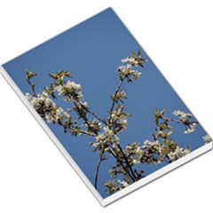 White Cherry Flowers And Blue Sky Large Memo Pads by picsaspassion
