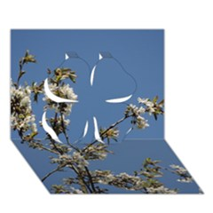 White Cherry Flowers And Blue Sky Clover 3d Greeting Card (7x5) by picsaspassion