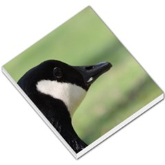 Goose, Black And White Small Memo Pads by picsaspassion