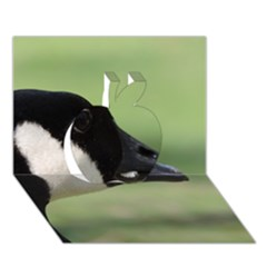 Goose, Black And White Apple 3d Greeting Card (7x5) by picsaspassion