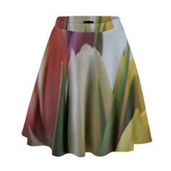 Colored By Tulips High Waist Skirt by picsaspassion