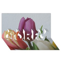 Tulip spring flowers SORRY 3D Greeting Card (8x4) by picsaspassion