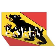 Flag Of Canton Of Bern Sorry 3d Greeting Card (8x4) by abbeyz71