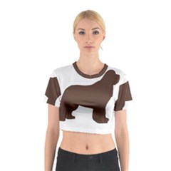 Newfie Silo Brown Cotton Crop Top by TailWags