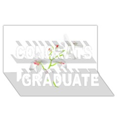 Isolated Orquideas Blossom Congrats Graduate 3d Greeting Card (8x4) by dflcprints