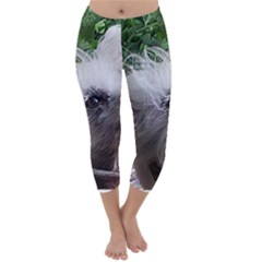 Chinese Crested Capri Winter Leggings  by TailWags