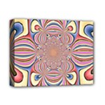 Pastel Shades Ornamental Flower Deluxe Canvas 14  x 11