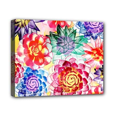 Colorful Succulents Canvas 10  X 8  by DanaeStudio