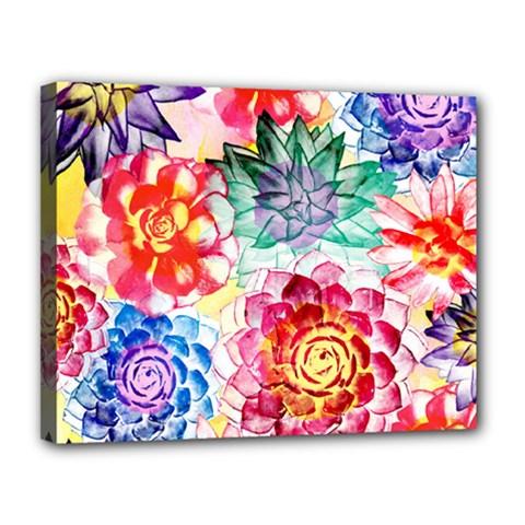 Colorful Succulents Canvas 14  X 11  by DanaeStudio