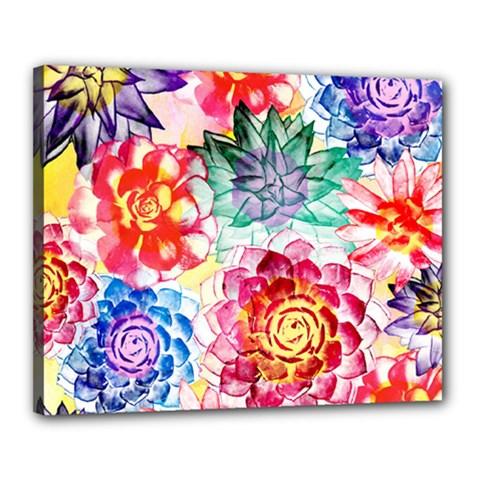 Colorful Succulents Canvas 20  X 16  by DanaeStudio