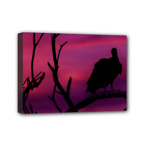 Vultures At Top Of Tree Silhouette Illustration Mini Canvas 7  X 5  by dflcprints