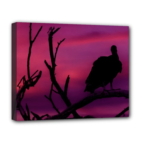 Vultures At Top Of Tree Silhouette Illustration Deluxe Canvas 20  X 16   by dflcprints