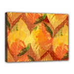 Fall Colors Leaves Pattern Canvas 16  x 12