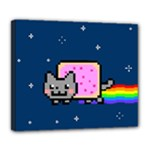 Nyan Cat Deluxe Canvas 24  x 20