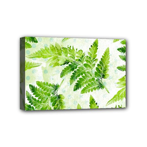 Fern Leaves Mini Canvas 6  X 4  by DanaeStudio