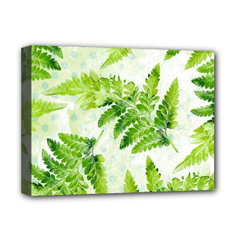 Fern Leaves Deluxe Canvas 16  X 12   by DanaeStudio