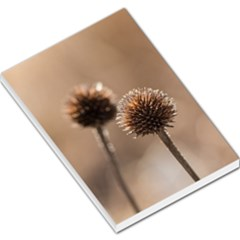 Withered Globe Thistle In Autumn Macro Large Memo Pads by wsfcow
