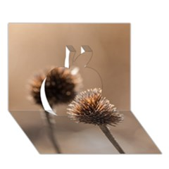 Withered Globe Thistle In Autumn Macro Apple 3d Greeting Card (7x5) by wsfcow