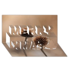 Withered Globe Thistle In Autumn Macro Merry Xmas 3d Greeting Card (8x4) by wsfcow