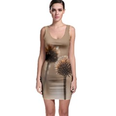 Withered Globe Thistle In Autumn Macro Sleeveless Bodycon Dress by wsfcow