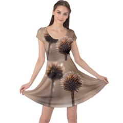 Withered Globe Thistle In Autumn Macro Cap Sleeve Dresses by wsfcow