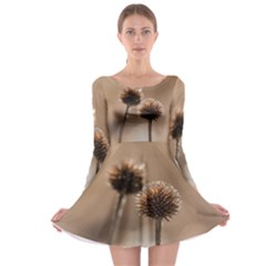 Withered Globe Thistle In Autumn Macro Long Sleeve Skater Dress by wsfcow