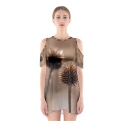 Withered Globe Thistle In Autumn Macro Cutout Shoulder Dress by wsfcow