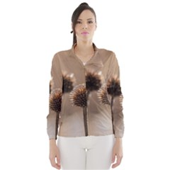 Withered Globe Thistle In Autumn Macro Wind Breaker (women) by wsfcow