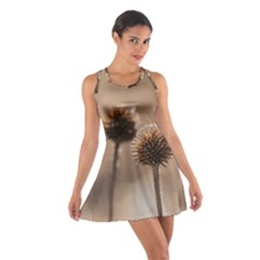 Withered Globe Thistle In Autumn Macro Cotton Racerback Dress by wsfcow
