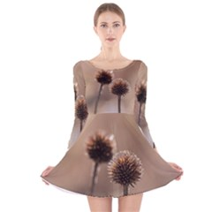 Withered Globe Thistle In Autumn Macro Long Sleeve Velvet Skater Dress by wsfcow