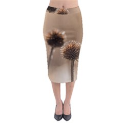 Withered Globe Thistle In Autumn Macro Midi Pencil Skirt by wsfcow