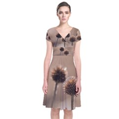 Withered Globe Thistle In Autumn Macro Short Sleeve Front Wrap Dress by wsfcow