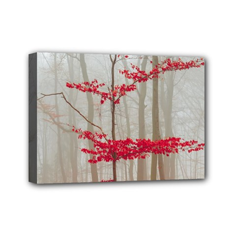Magic Forest In Red And White Mini Canvas 7  X 5  by wsfcow