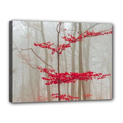 Magic Forest In Red And White Canvas 16  X 12  by wsfcow
