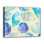 Seashells Canvas 14  x 11